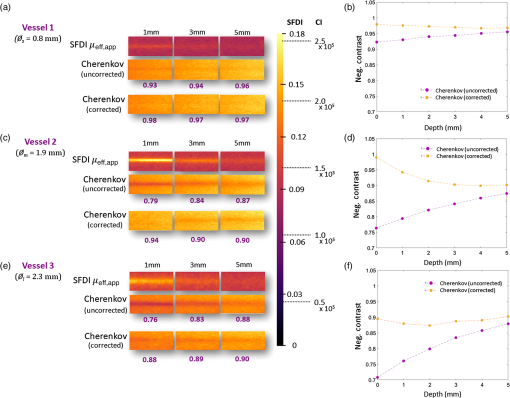 Correcting Cherenkov light attenuation in tissue using