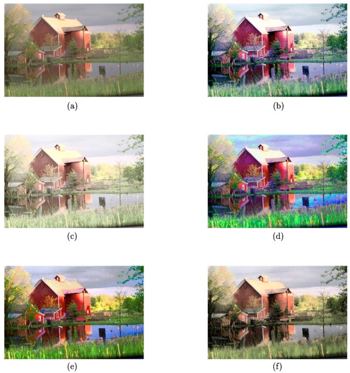 Adaptive-neighborhood histogram equalization of color images