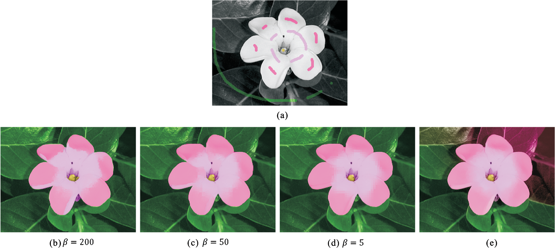 Prioritized Image And Video Colorization Based On Gaussian Pyramid
