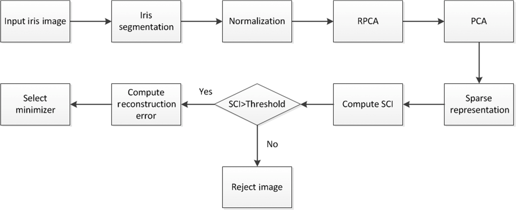 Iris recognition based on robust principal component analysis