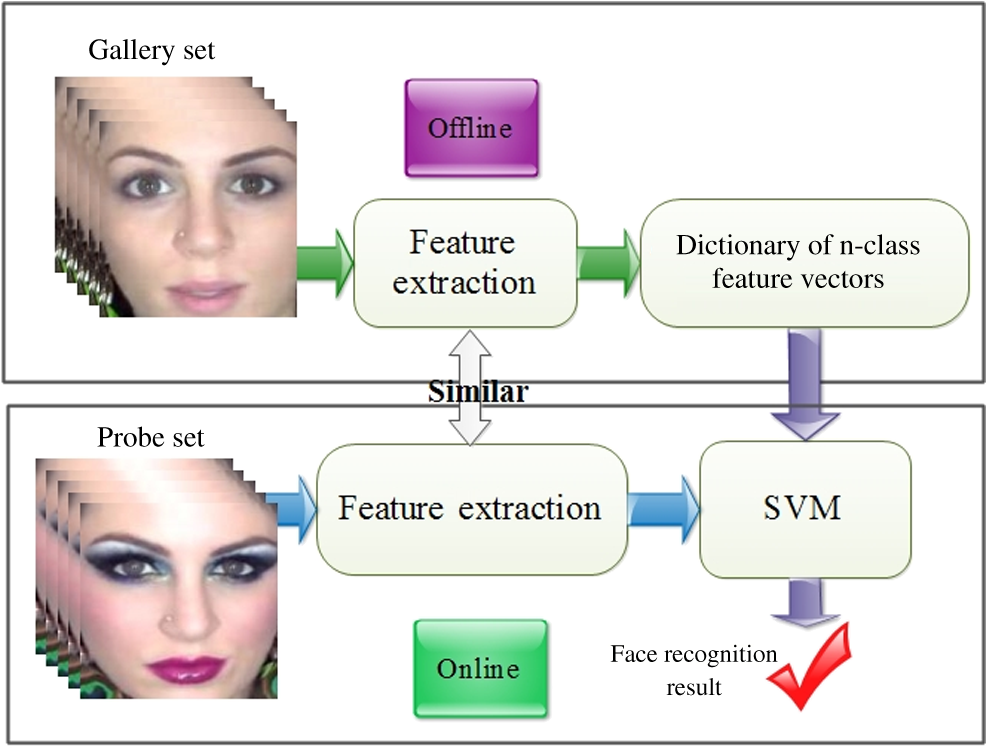Face recognition across makeup and plastic surgery from real-world