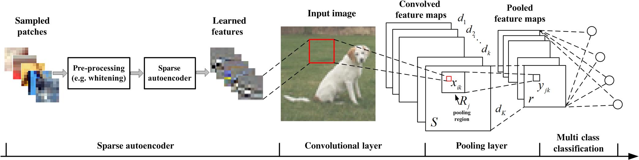 Fine-grained representation learning in convolutional autoencoders