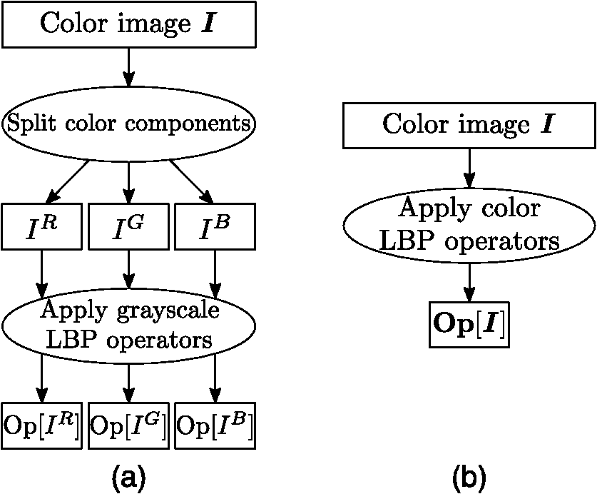 Color local binary patterns: compact descriptors for texture