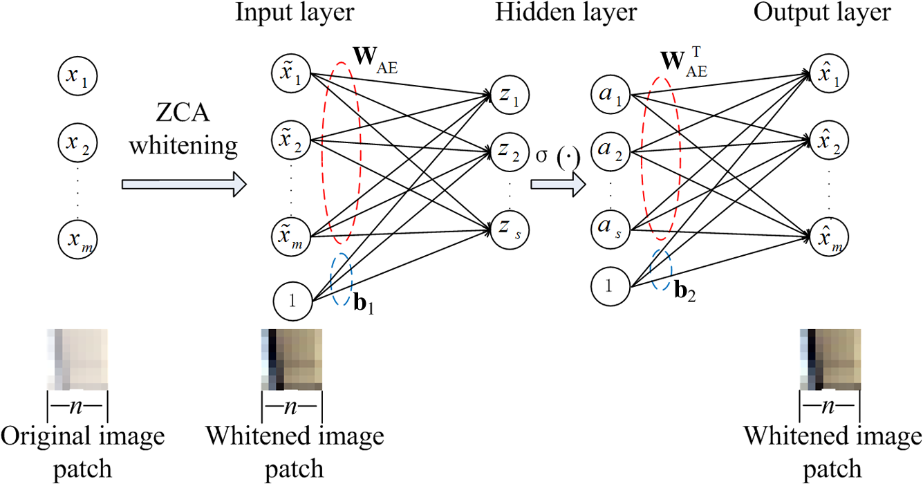 Emotional textile image classification based on cross domain the architecture of an autoencoder neural network including whitening transformation fandeluxe Choice Image