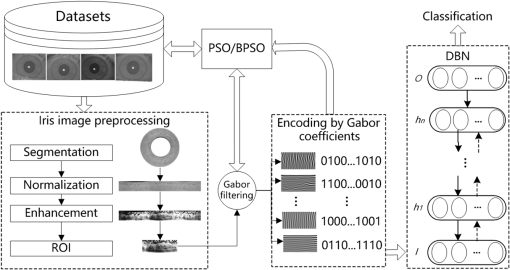 Deep learning architecture for iris recognition based on
