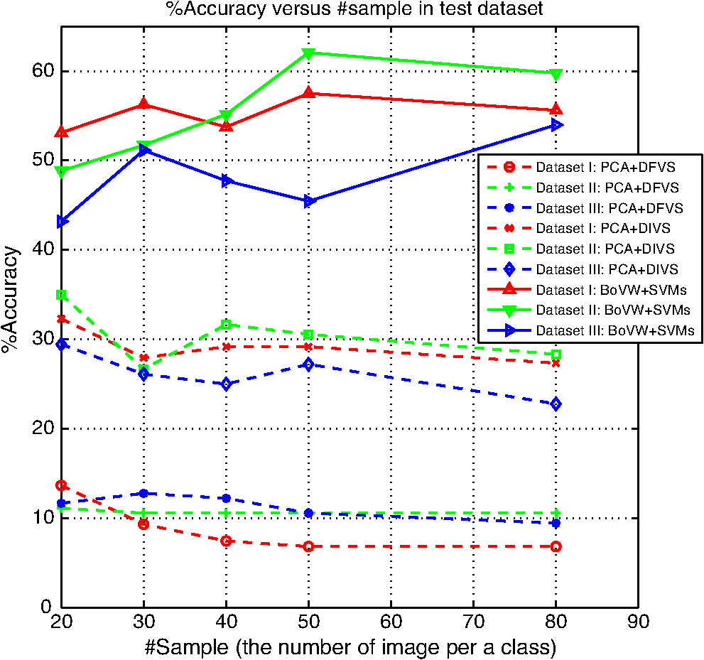 Automatic vehicle classification using linked visual words