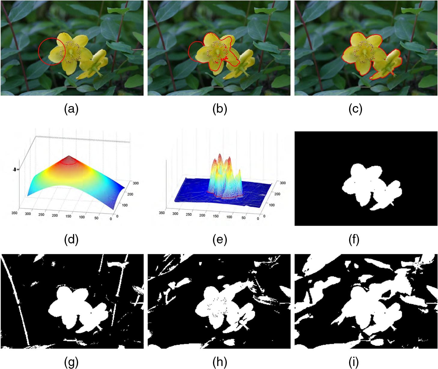 Texture image segmentation using statistical active contours