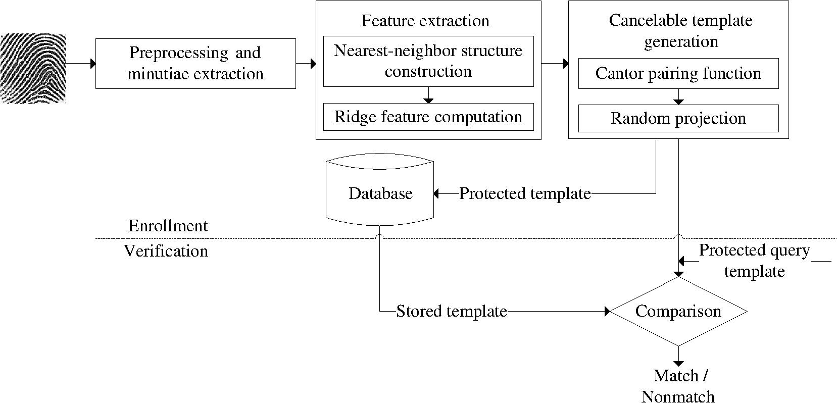 Securing Fingerprint Template Using Noninvertible Ridge Feature