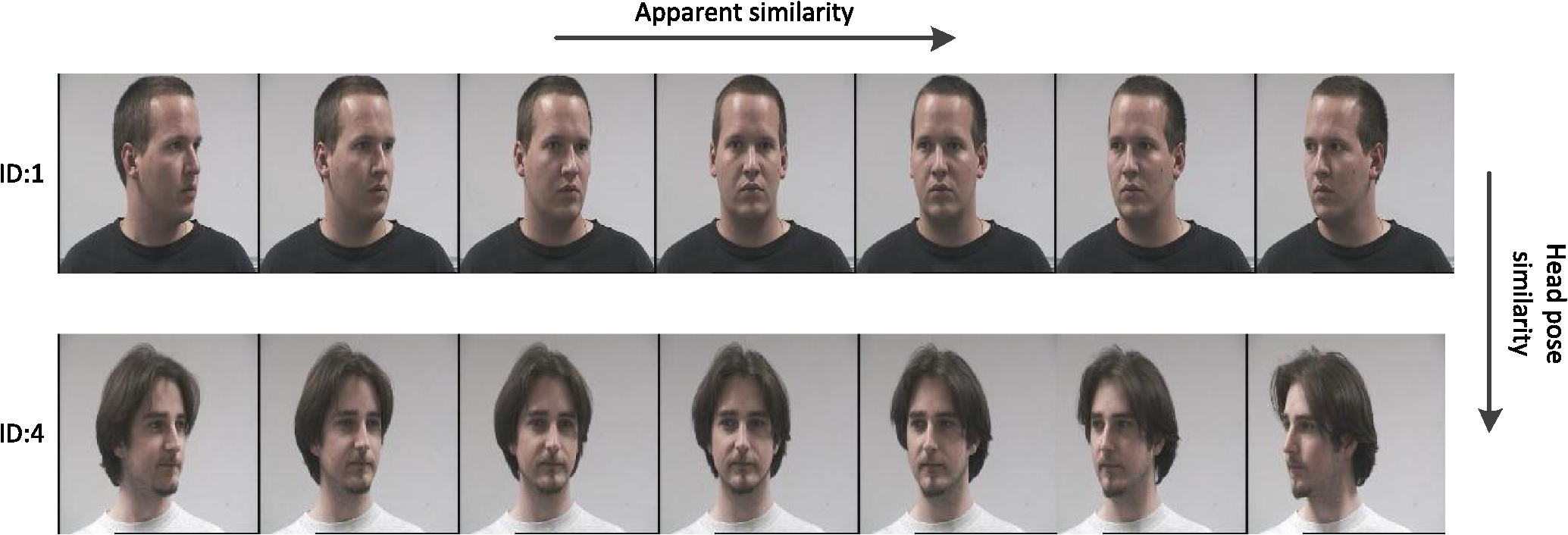 Head Pose Estimation Using Deep Multitask Learning