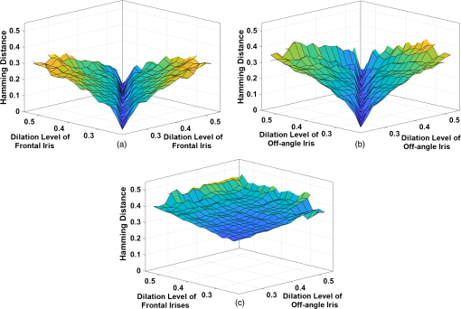 Effect of pupil dilation on off-angle iris recognition
