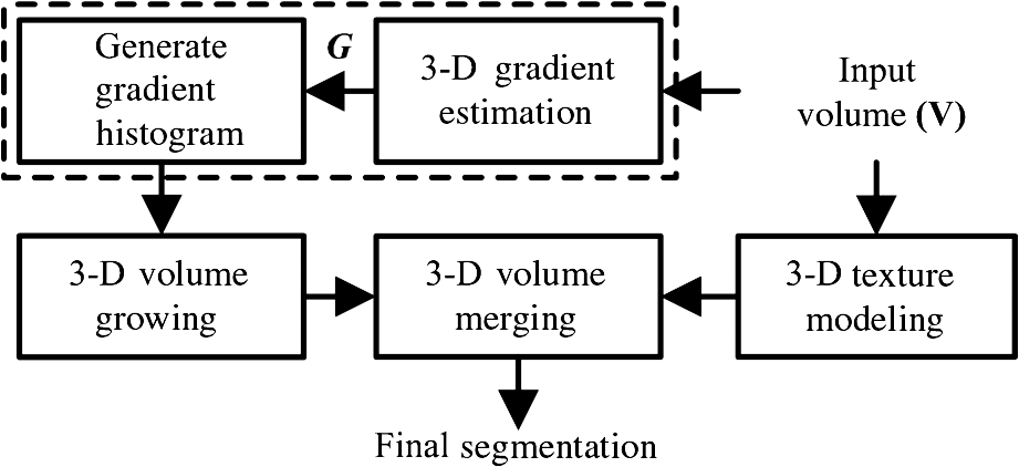 Synthesis of intensity gradient and texture information for