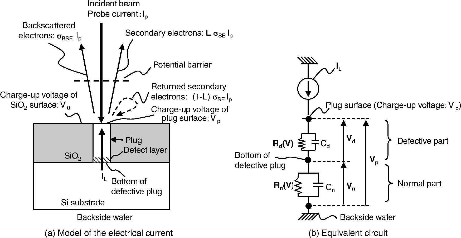Quantitative Measurement Of Voltage Contrast In Scanning Electron Noncontact High Detector Scheme Schematic Illustration The Equivalent Circuit Model
