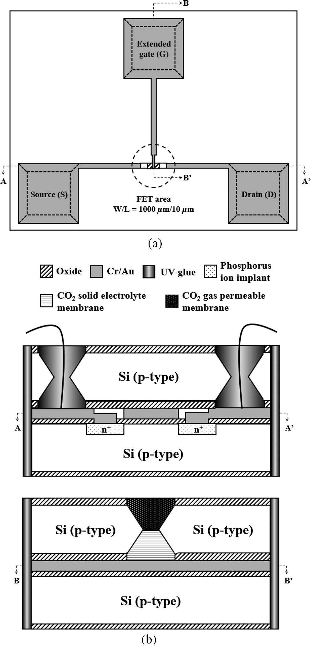 High Performance Extended Gate Field Effect Transistor Based 1khz Sine Wave Generator With Bc238 A Top View Layout And B Cross Sectional Structure Of The Presented Egfet Carbon Dioxide Co2 Co 2