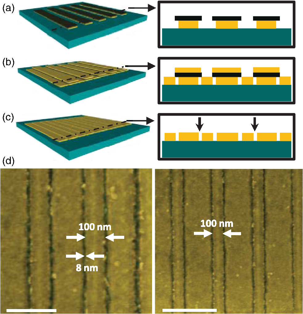 D Colorized Sem Images Of The Resulting Dual Width Au Grid Structure Scale Bars Are 250 And 500 Nm Respectively Gap Is 8nm 8