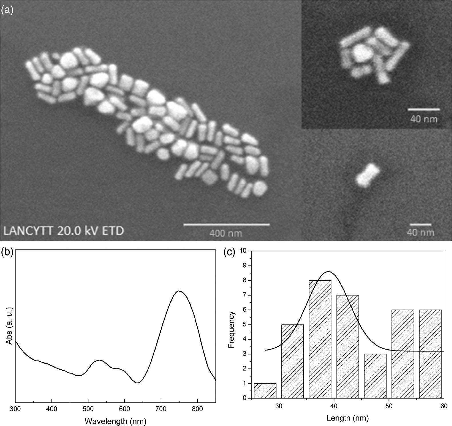 Surface-enhanced Raman scattering of hydroquinone assisted by gold