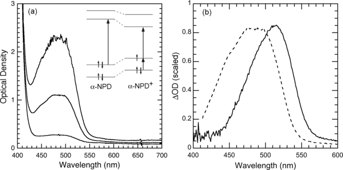 electromodulated doping of the hole transport layer in a