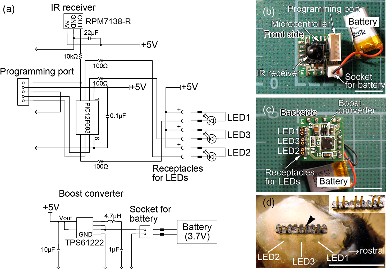 Programmable Wireless Light Emitting Diode Stimulator For Chronic Rgb Led Fashion Lighting Controller Circuit Schematic Circuits Connector Indicated By An Arrowhead Serves As The Interface Between Leds And Inset Shows Side View Of Plug