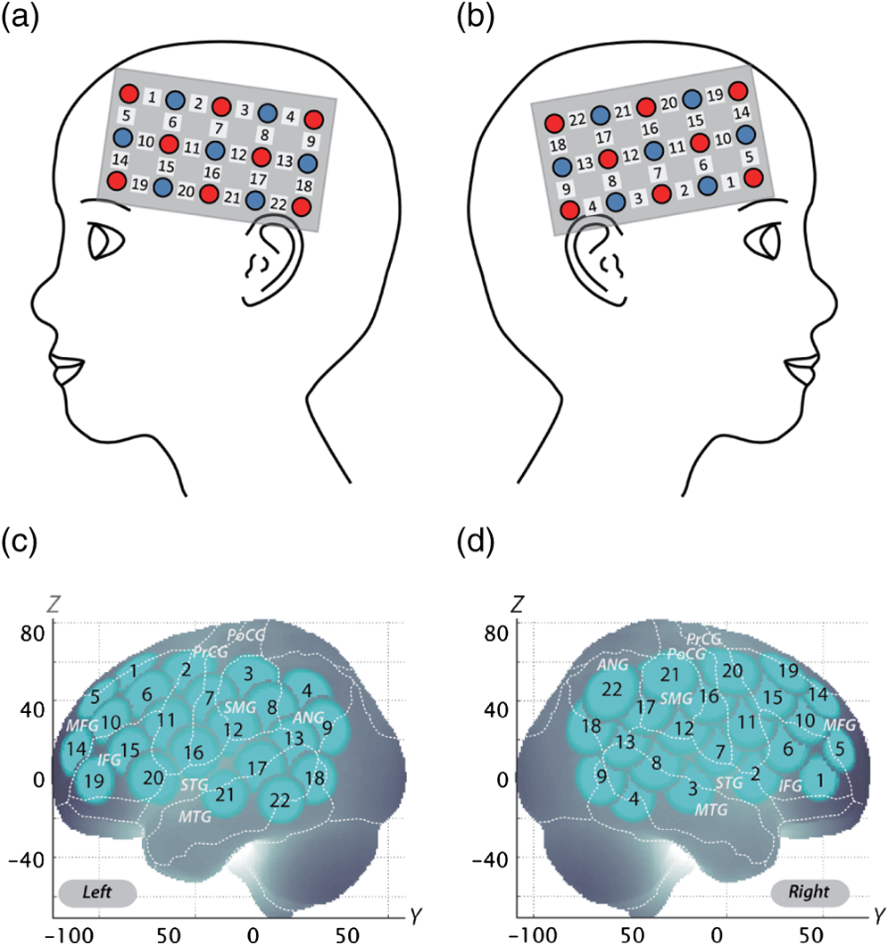 Neuropharmacological effect of methylphenidate on attention network ...