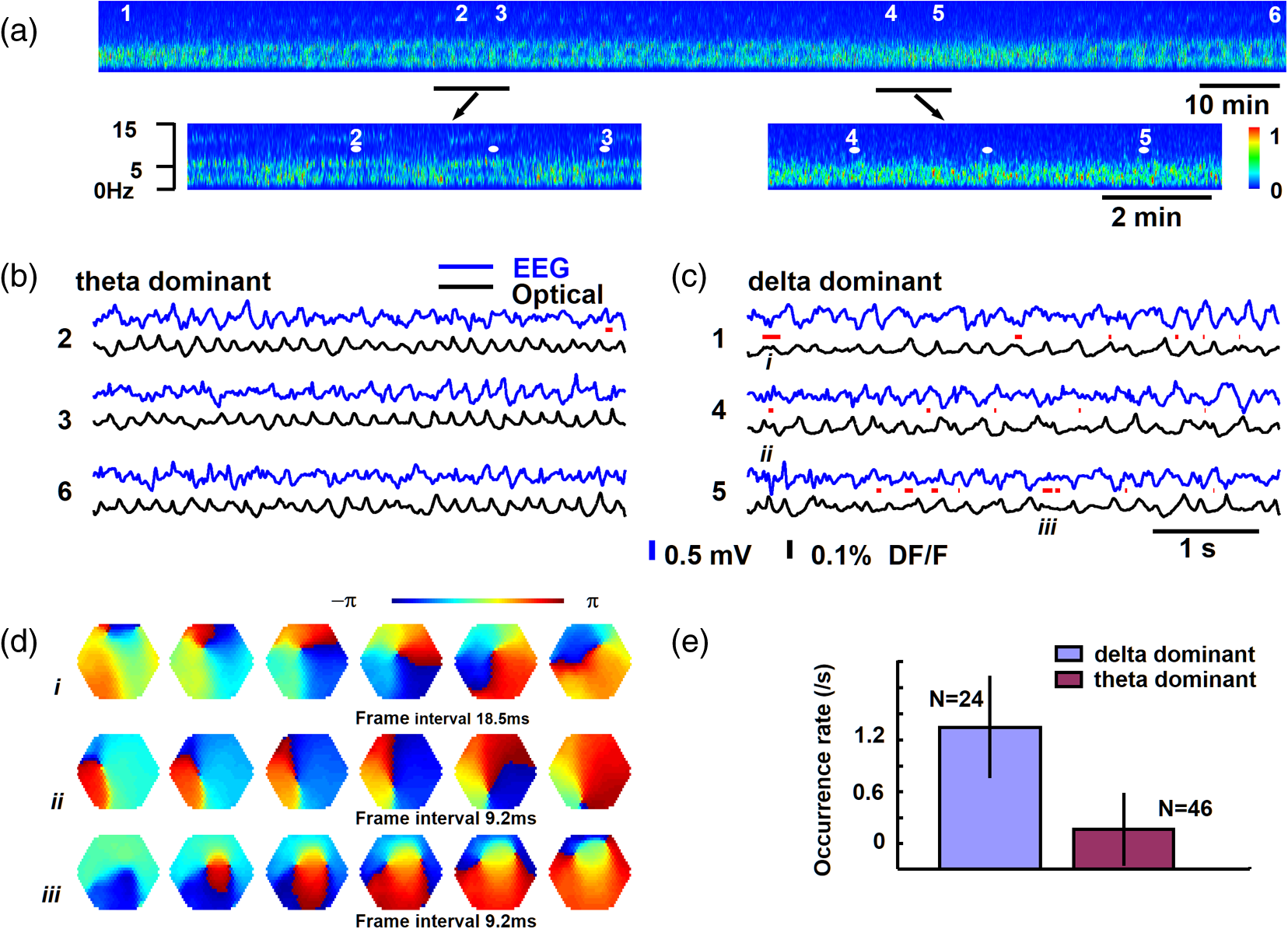 Blue Voltage Sensitive Dyes For Studying Spatiotemporal Dynamics In Of Electrical Panels Understanding The Relationship Star Delta Imaging Area Is 4 Mm Diameter E Rate Occurrence Spiral Waves During Sleep Like States Modified From Ref