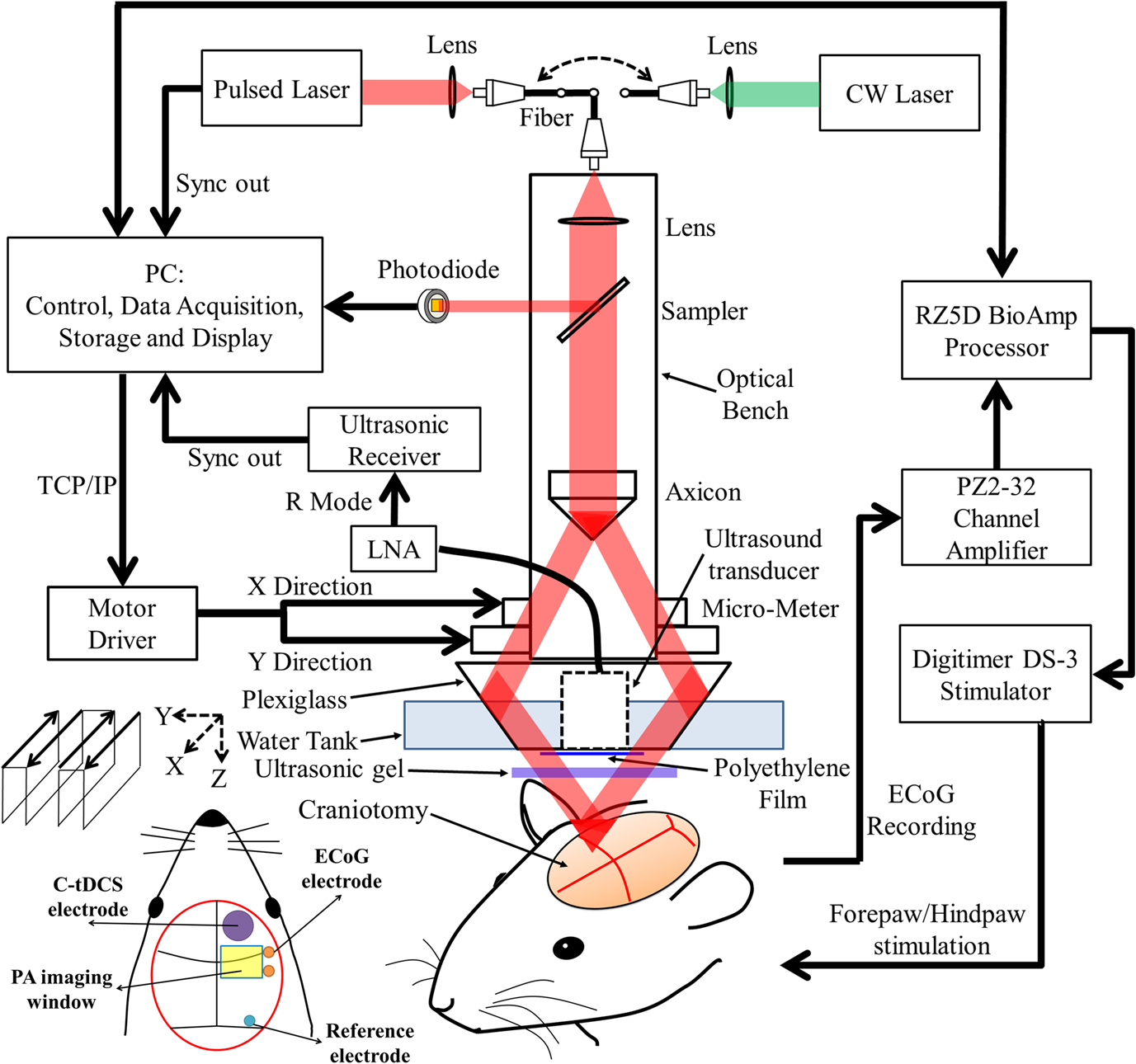 Integrated Treatment Modality Of Cathodal Transcranial Direct Cascaded Form C Dry Contact Wiring Schematic For Tdcs Intervention The Electrode Was Placed On Skull While Anodal Attached To Venter