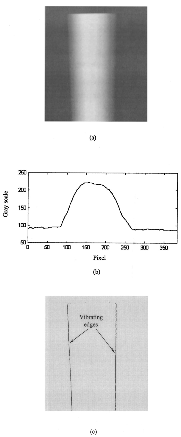 Evaluation Of Youngs Modulus A Vibrating Beam By Optical Method The Supports Draw Thequantitative Shear And Bending Moment Diagrams Scanned Area Scanning Time1 250 S B Corresponding Grayscale Distribution Across One Section C