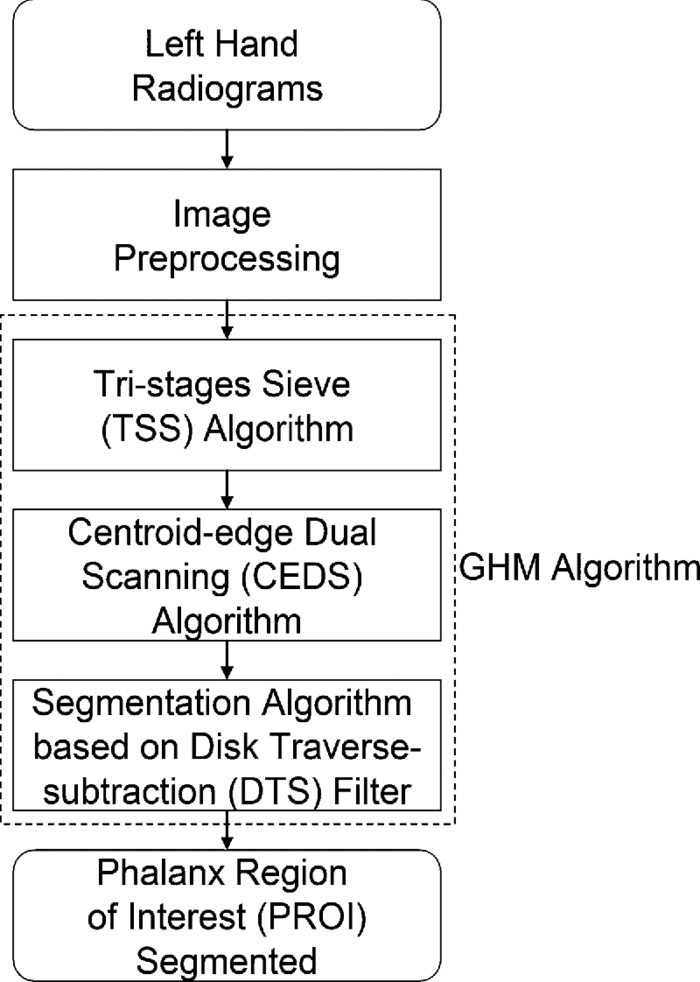 Fast and fully automatic phalanx segmentation using a grayscale