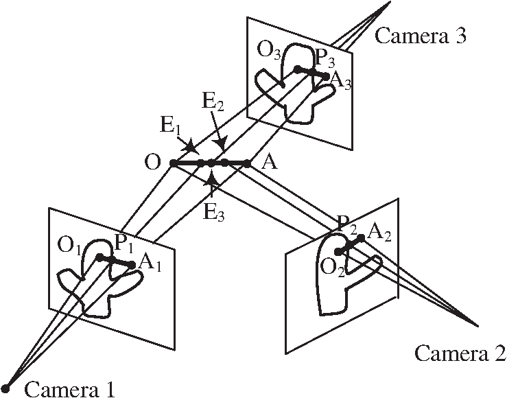 Constructing Three Dimensional Plant Stems Model From Images