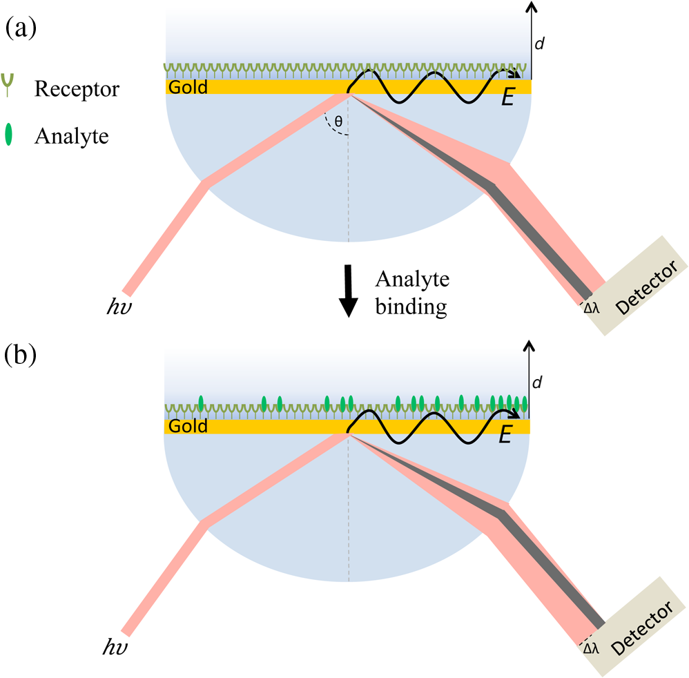 Recent Advances In Plasmonic Nanostructures For Sensing A Review Gold Detector Schematic Diagram Depiction Of Spr Measurement Using Kretschmann Configuration Before Analyte Is Present And B After Showing Spectral