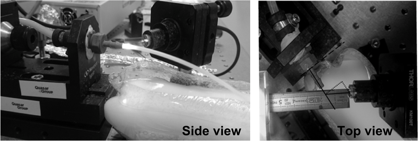 Laser diode self-mixing interferometry for velocity measurements