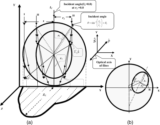 Extended Interference Formula For Optical Fiber Characterization