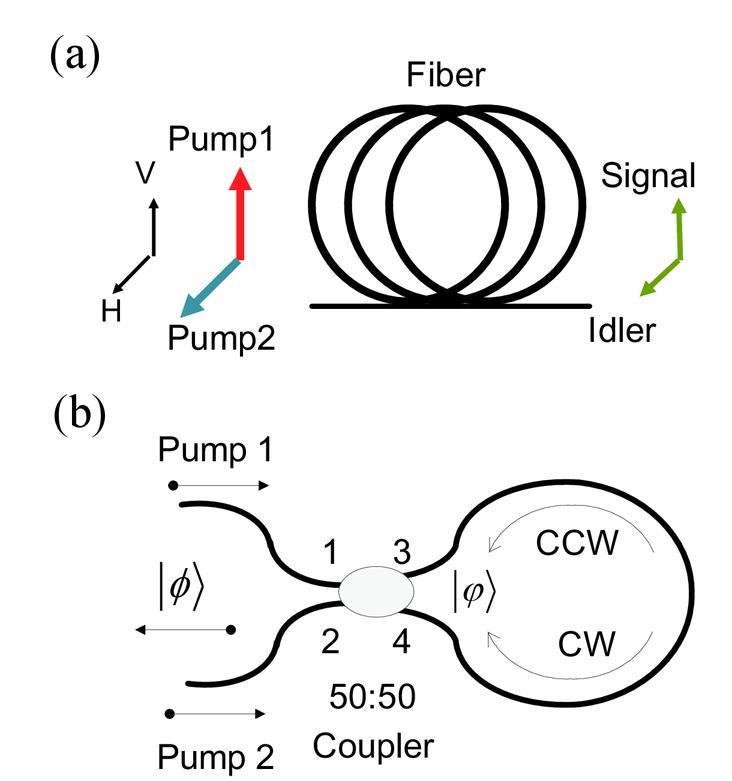 Fiber Based Frequency Degenerate Polarization Entanglement Photon
