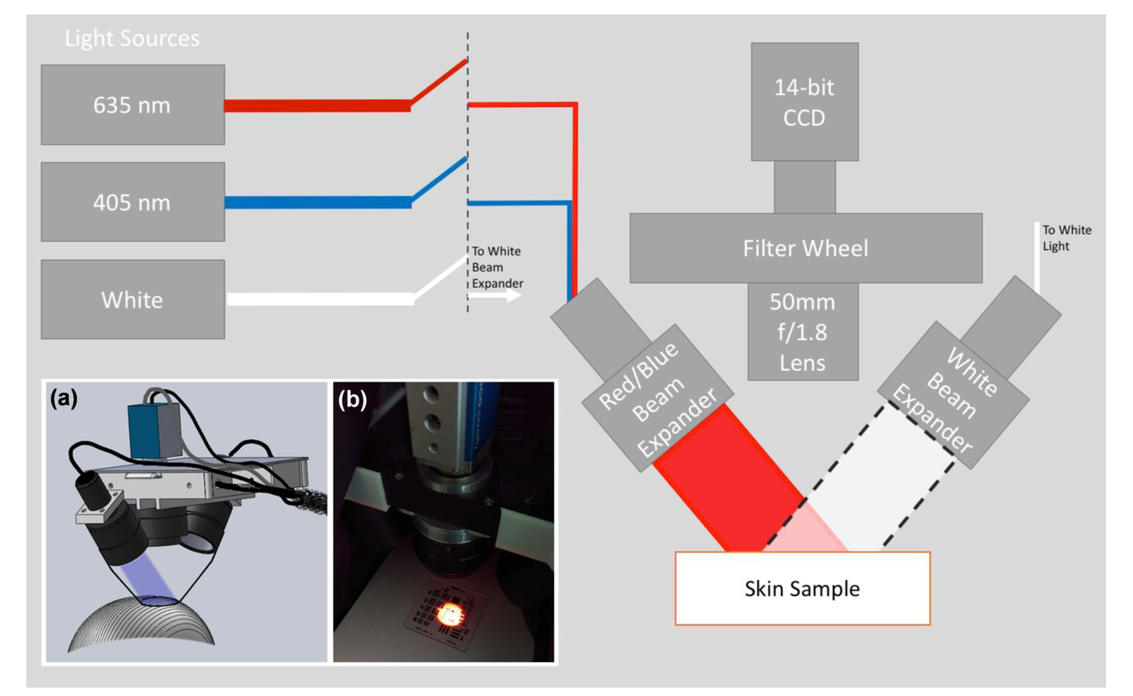 In vivo wide-field multispectral dosimeter for use in ALA-PpIX based