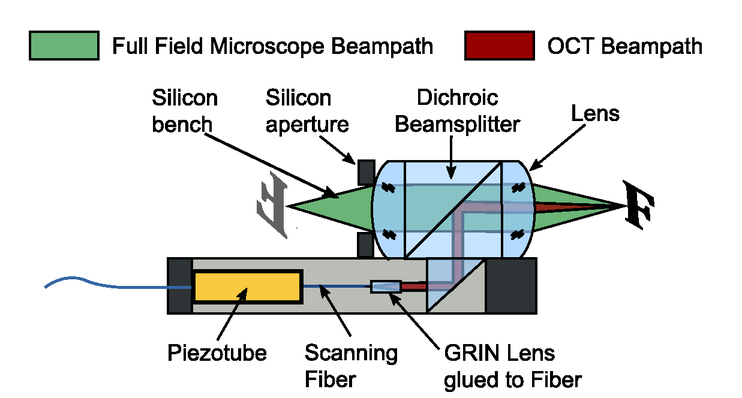 Design and optimization of a miniaturized imaging probe for