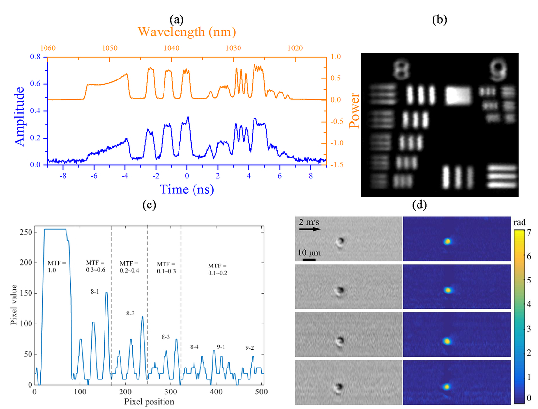 High-throughput label-free screening of euglena gracilis