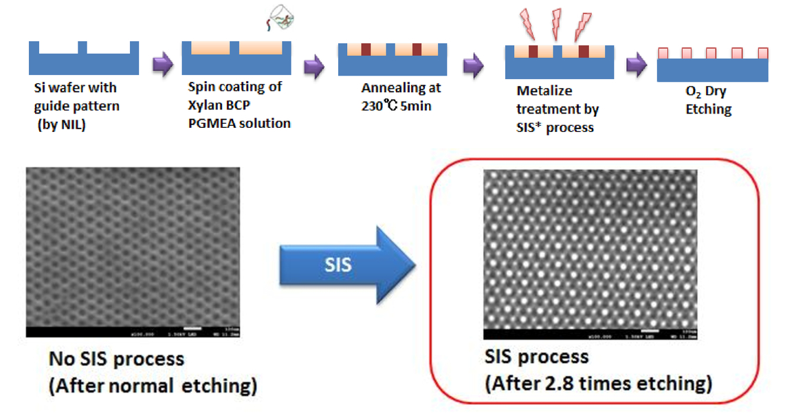 Hemicellulose block copolymers made from woods for wide