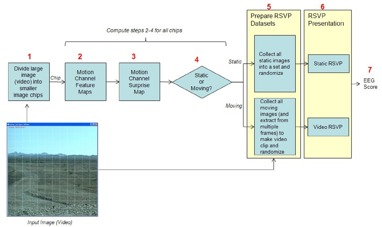Optimized static and video EEG rapid serial visual presentation