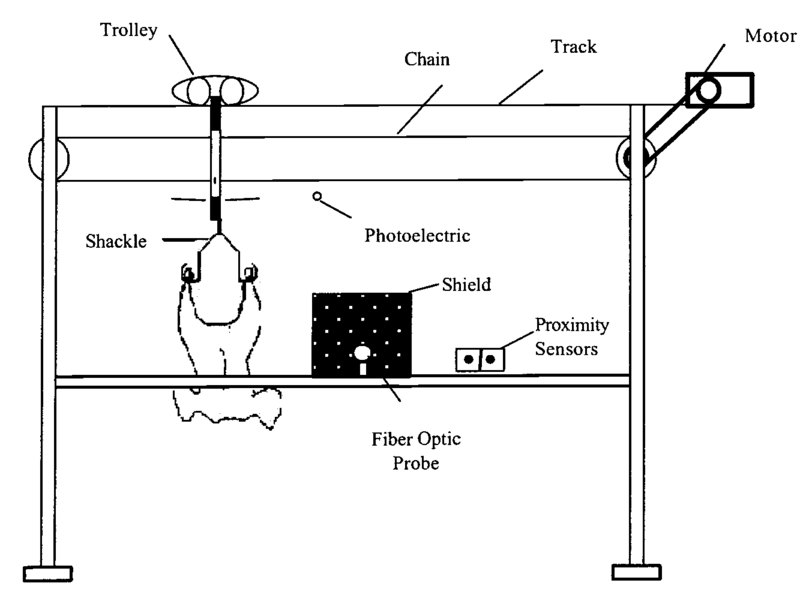 Advances in sensing technologies for poultry inspection