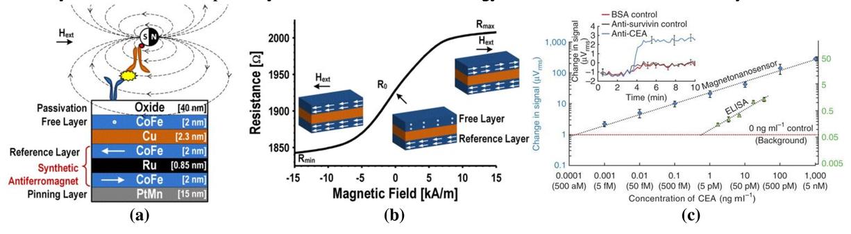 Magnetoresistive biosensors for quantitative proteomics