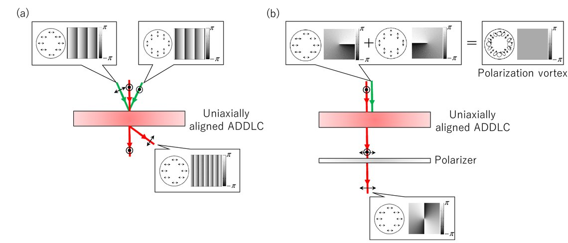 Functionalized liquid crystal polymers generate optical and