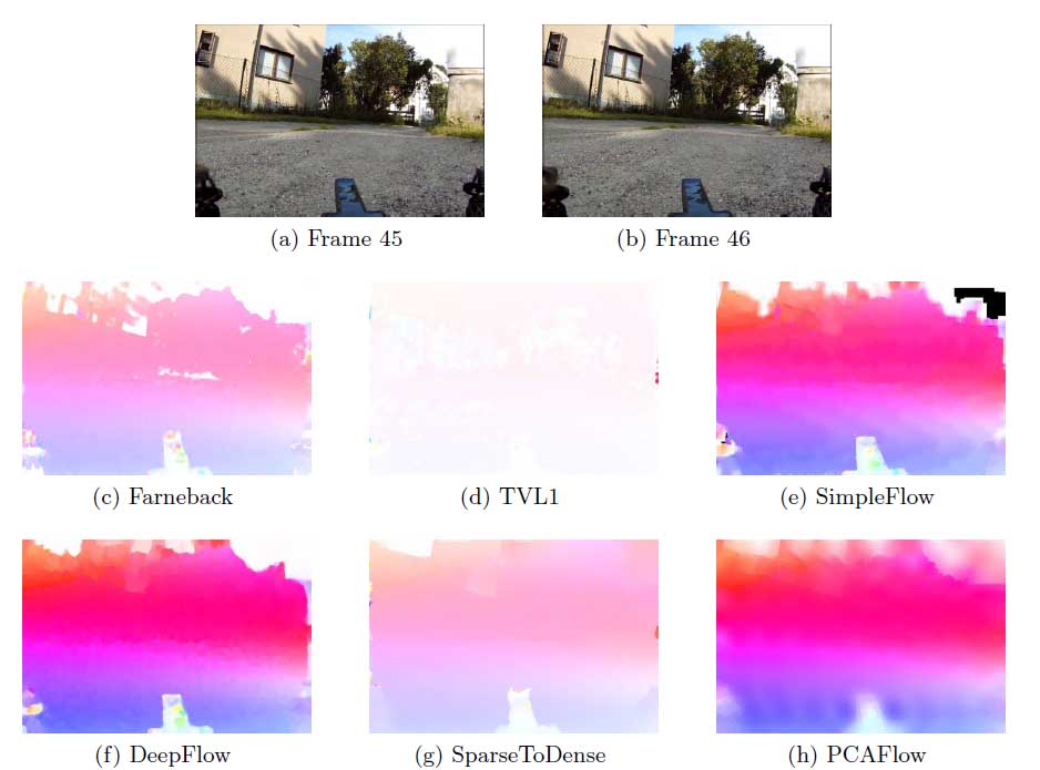 The role of optical flow in automated quality assessment of