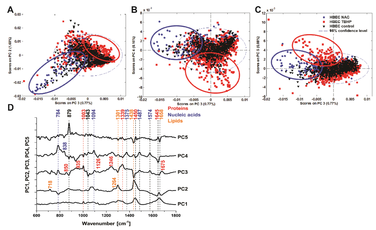 Application of confocal Raman micro-spectroscopy for label-free