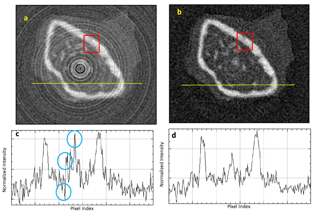 Use of a CMOS-based micro-CT system to validate a ring artifact