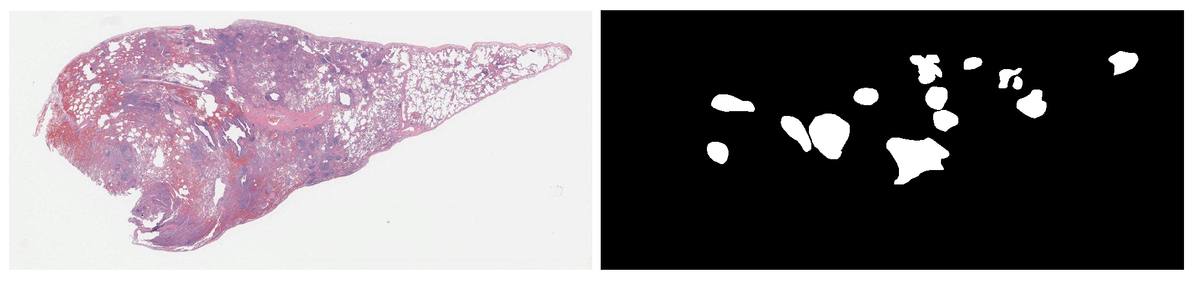 SlideSeg: a Python module for the creation of annotated image