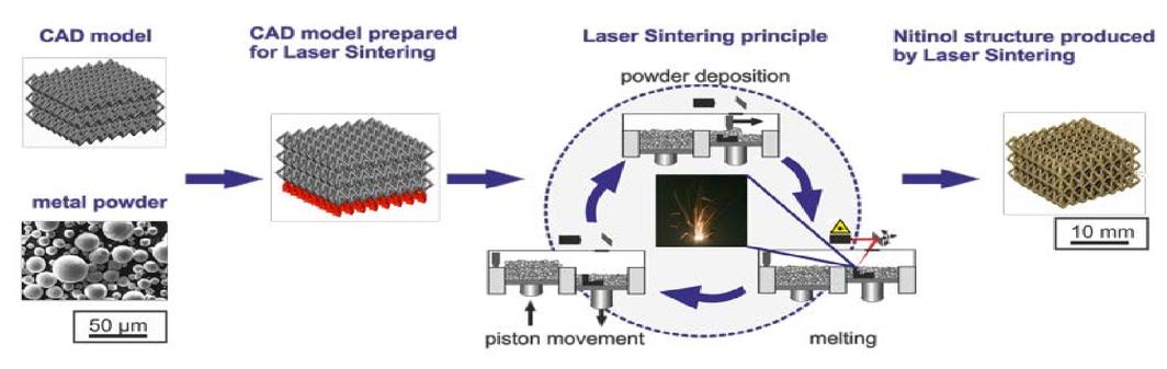 Selective laser melting of Ni-rich NiTi: selection of