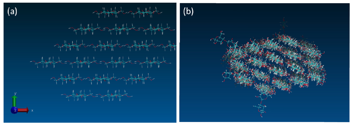 Atomistic molecular dynamics study to investigate thermal