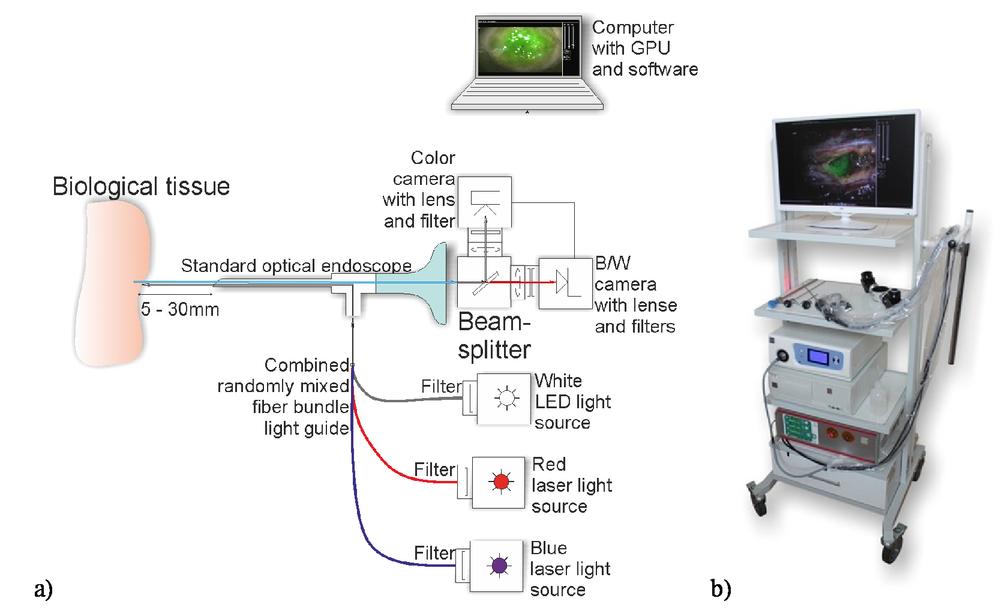 Multimodal fluorescence imaging navigation for surgical guidance of