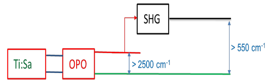 Implementation of stimulated Raman losses and stimulated