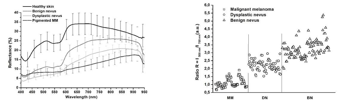Optical UV-VIS-NIR spectroscopy of benign, dysplastic and