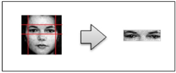 Gender classification from face images by using local binary