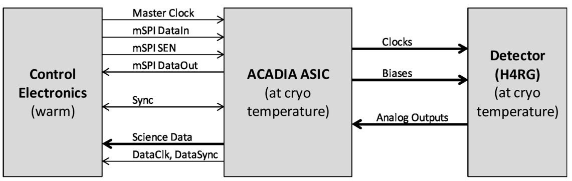 The ACADIA ASIC: detector control and digitization for the